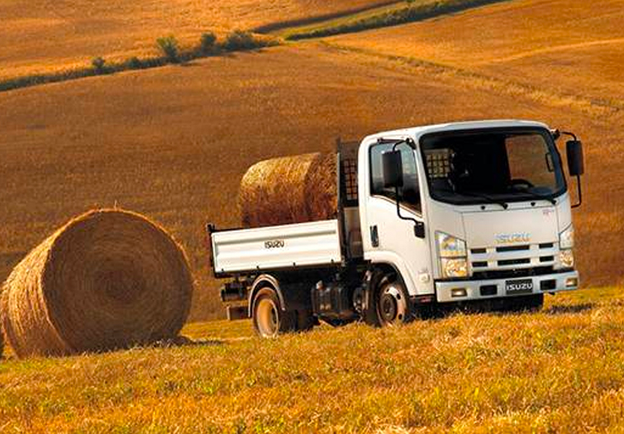 Nou Isuzu Truck M21
